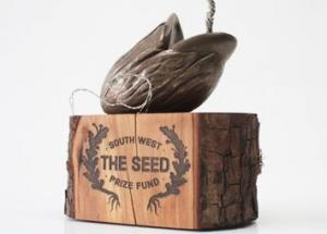 Bespoke award seed fund