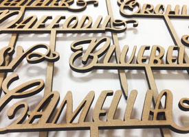 Laser cut wooden letters